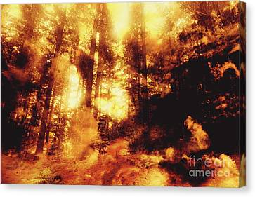 Forest Fires Canvas Print by Jorgo Photography - Wall Art Gallery