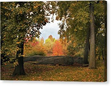 Forest Foliage Canvas Print by Jessica Jenney