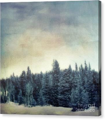Forest For The Trees Canvas Print by Priska Wettstein
