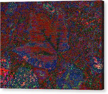 Forest For The Trees Canvas Print by Tim Allen