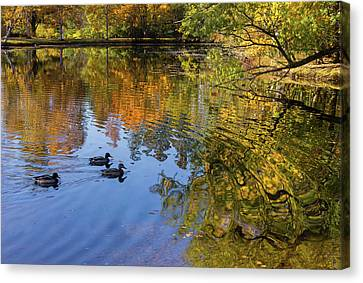 Forest Hill Reflections II Canvas Print