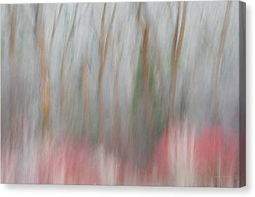 Forest Impression 1 Canvas Print by Leland D Howard