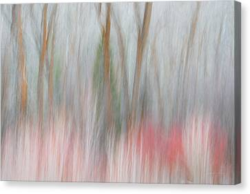 Forest Impression 2 Canvas Print by Leland D Howard