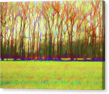 Abstract Digital Art Canvas Print - Forest In Autumn Light by Jon Woodhams