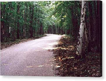 Canvas Print featuring the photograph Forest In The Road Wc 2 by Lyle Crump
