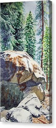 Forest Canvas Print by Irina Sztukowski