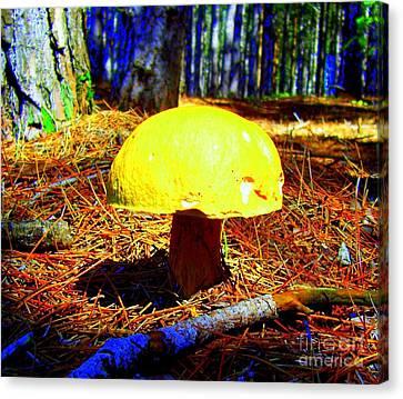 Canvas Print featuring the photograph Forest Life by Jolanta Anna Karolska