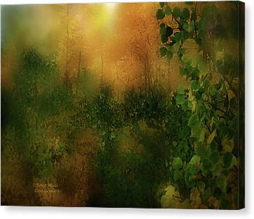 Forest Moods Canvas Print