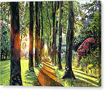 Forest Of Enchantment Canvas Print by David Lloyd Glover