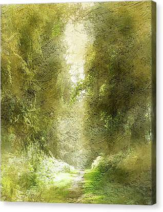 Forest Path Canvas Print by The Rambler