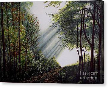 Forest Pathway Canvas Print by Judy Kirouac