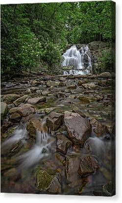 Forest Peace At Hawk Falls Canvas Print by Rick Berk