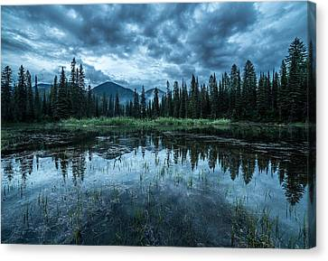 Forest Reflection // Whitefish, Montana  Canvas Print by Nicholas Parker