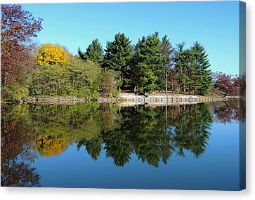 Forest Reflections Canvas Print by Teresa Schomig