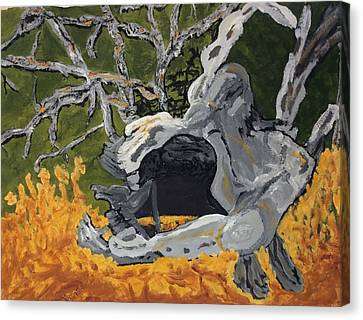 Seem Canvas Print - Forest Stump-old Growth Invitation by Anne Marjorie Erickson