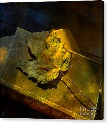 Canvas Print featuring the photograph Forever Autumn by LemonArt Photography