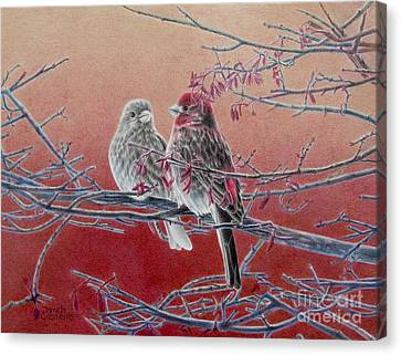Forever Finch Canvas Print