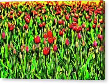 Garden Canvas Print - Forever Tulips by Mark Kiver