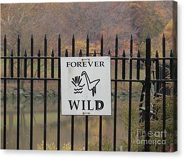 Forever Wild Canvas Print