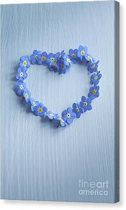 Forget Me Not Heart Canvas Print