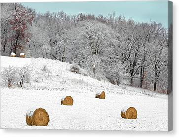 Forgotten Bales Canvas Print by Todd Klassy