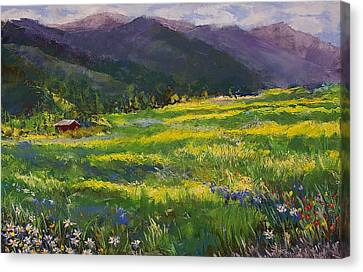 Forgotten Field Canvas Print by David Patterson