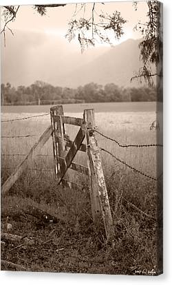 Forgotten Fields 2 Canvas Print by Holly Kempe