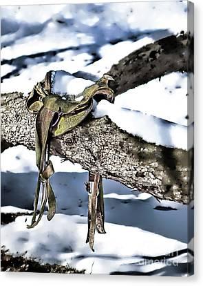 Forgotten Saddle Canvas Print by Nicki McManus