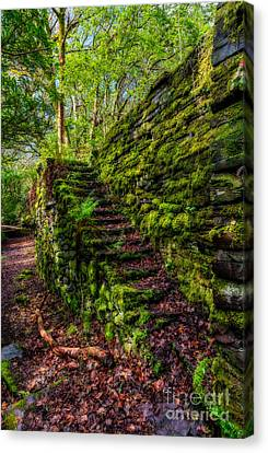 Forgotten Steps Canvas Print by Adrian Evans
