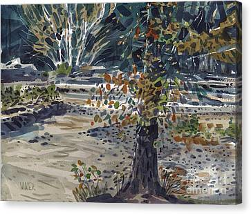 Fork In The White River Canvas Print