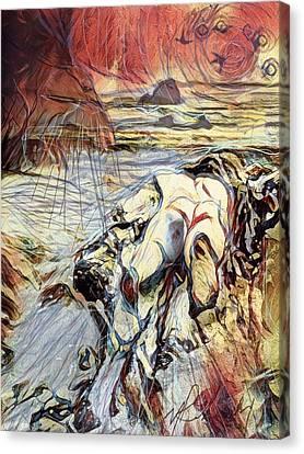 Forlorn Driftwood Canvas Print