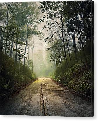 Melancholy Canvas Print - Forsaken Road by Scott Norris