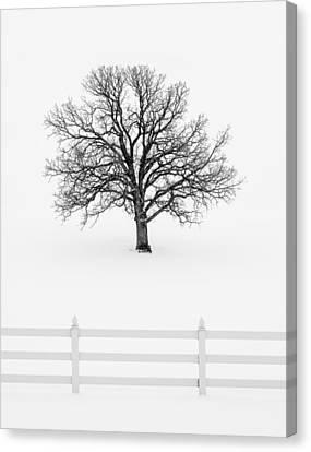 Forlorn Canvas Print - Forsaken Winter by Todd Klassy