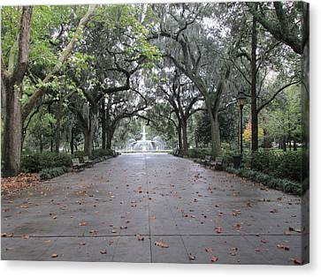 Forsyth Park In The Fall Canvas Print by Robin Keith McCown