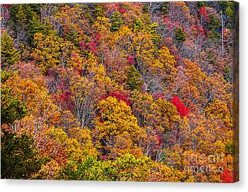 Fort Mountain State Park Cool Springs Overlook Canvas Print by Bernd Laeschke