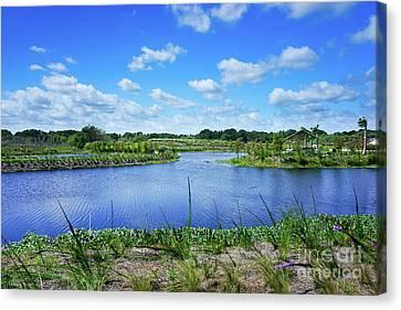 Fort Pierce Canvas Print - Fort Pierce Florida Savannah by Liesl Marelli