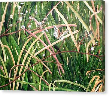 Fort Toulouse Butterfly Canvas Print by Beth Parrish