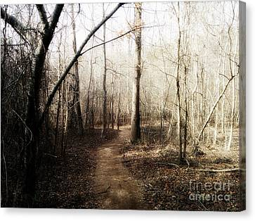 Canvas Print featuring the photograph Fort Yargo Trail by Utopia Concepts