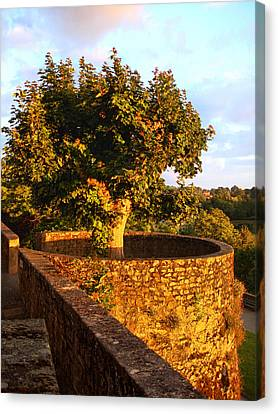 Fortress Tree At Sunset In Le Dorat Canvas Print