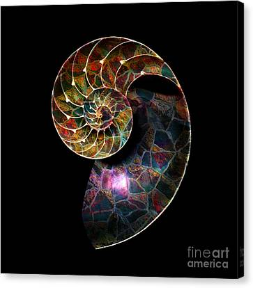 Canvas Print featuring the digital art Fossilized Nautilus Shell by Klara Acel