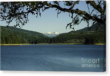 Foster Lake Winter Landscape Canvas Print