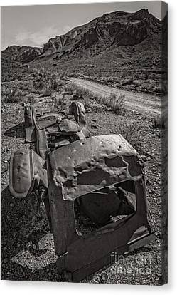 Found On Road Dead Canvas Print by Charles Dobbs