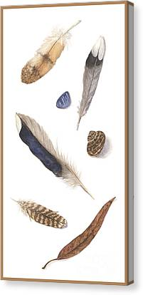 Found Treasures Canvas Print by Lucy Arnold