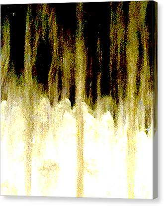 Fountain 48 Abstract Canvas Print by Ken Lerner