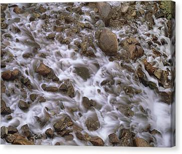 Fountain Creek Up Close  Canvas Print by Bijan Pirnia