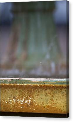 Depth Of Field Canvas Print - Fountain by Dustin K Ryan