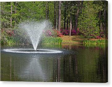 Fountain Of Spring Canvas Print by Suzanne Gaff