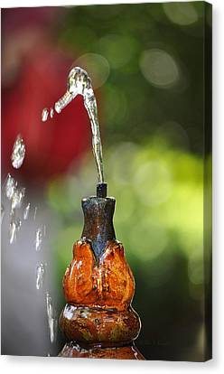Fountain Tip Canvas Print by John Knapko