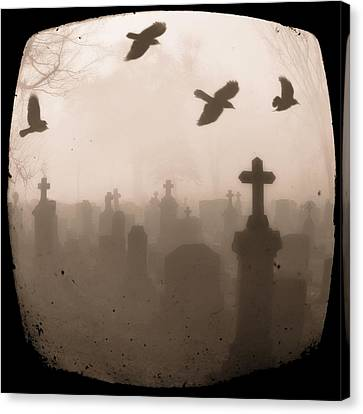 Four Crows Fly Through The Dark And Foggy Cemetery Canvas Print