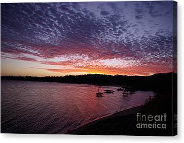 Canvas Print featuring the photograph Four Elements Sunset Sequence 1 Coconuts Qld  by Kerryn Madsen - Pietsch